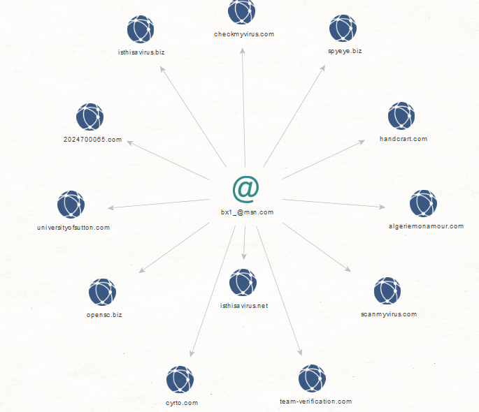 "Profiling the ""Jabber ZeuS"" Rogue Botnet Enterprise - An Analysis"